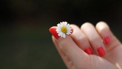 Photo of Nagelhautpflege – Darauf kommt es an